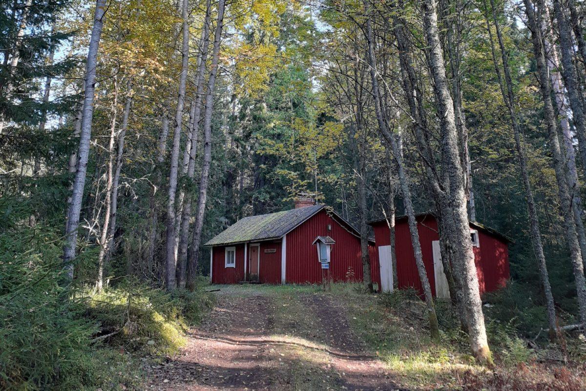 Sivin autiotuvan pihapiiri. Kuvassa punainen tupa ja sivurakennus sekä tuvalle johtava tie. Kuvassa syysruskan värjäämiä puita mm. haapoja.