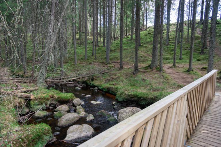 Etualalla sillankaide, taka-alalla kuusia ja polkuja, joessa kiviä.