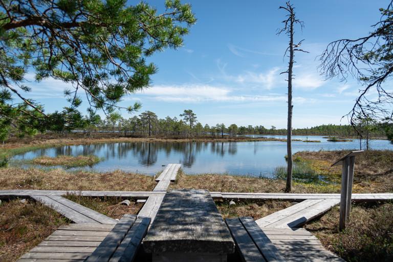 Taukopaikka Kauhalammen rannalla, etualalla puiset penkit ja pöytä, takaalalla pitkospuut ja vesistö.