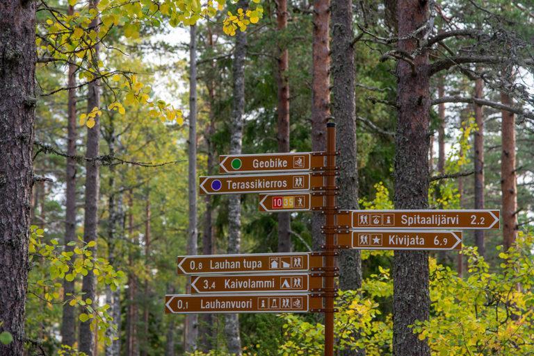 Opaskyltit reiteille ruskaisessa metsässä. Kylteistä näkee että esimerkiksi Spitaalijärvelle on matkaa 2,2 km ja Kivijadalle 6,9 km.