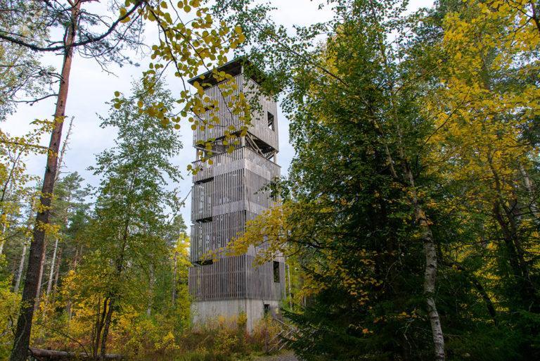 Puinen näkötorni Lauhanvuoren huipulla.