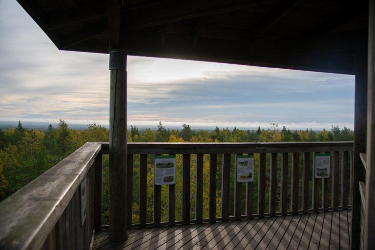 Näkötornin huipulla yli 240 metrin korkeudesta avautuvat hienot maisemat, varsinkin ruskan aikana.