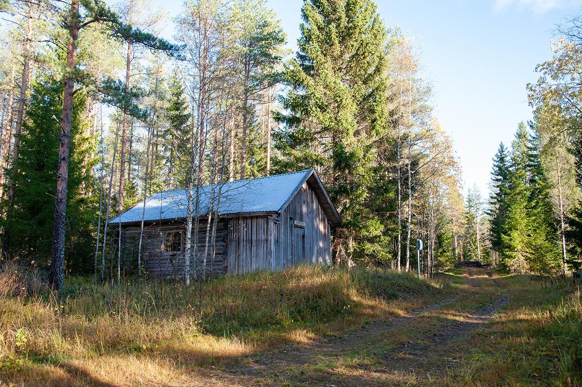 Autiotupa sijaitsee metsätien varressa. Rakennus kuvattu sivulta päin, rakennuksen edestä kulkee metsätie.