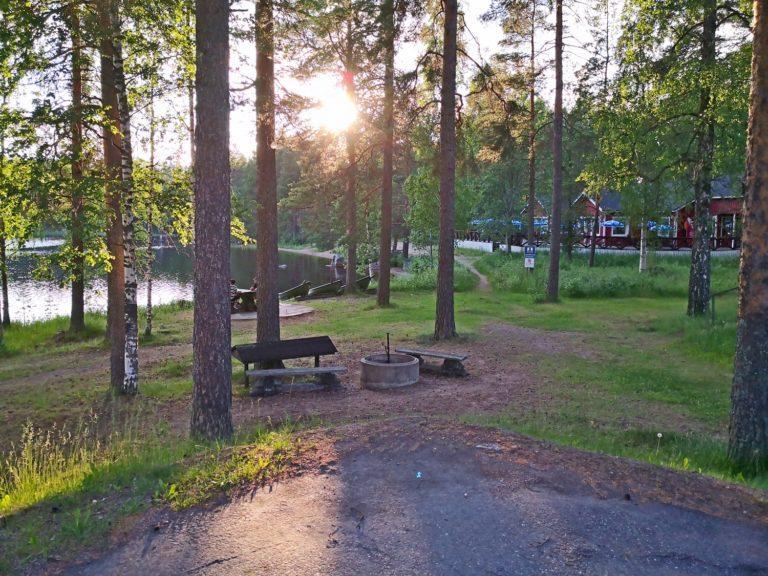 Kesäinen kuva, etualalla mäntyjä ja tulipaikka, taka-alaalla järvi ja punaisia rakennuksia.