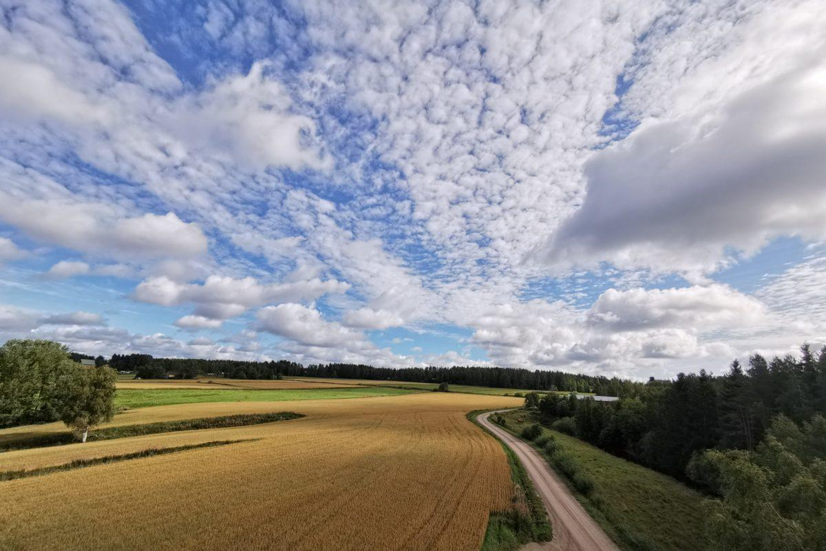 Pantintien näkötornista avautuvat upeat näkymät Hyypänjokilaaksolle.