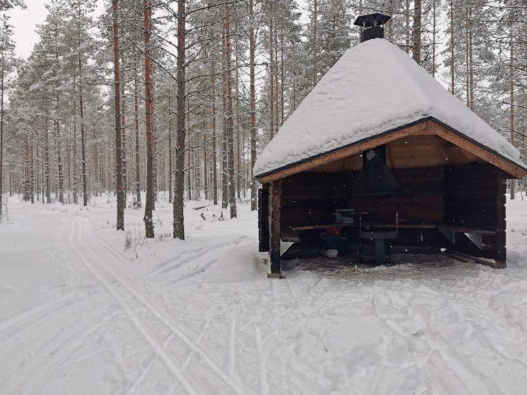 Lumisessa talvikuvassa hirsinen laavu mäntymetsässä.