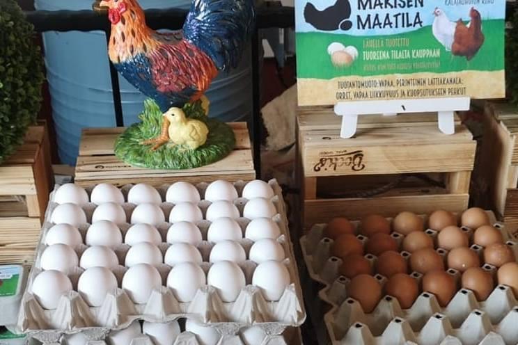 Valkoisia ja ruskeita kananmunia.