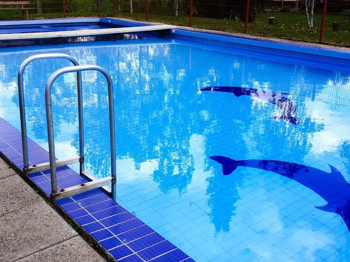 Ulkouima-allas. Metalliset rappuset johtavat siniseen veteen, altaan pohjalla on kaksi delfiinikuviota.