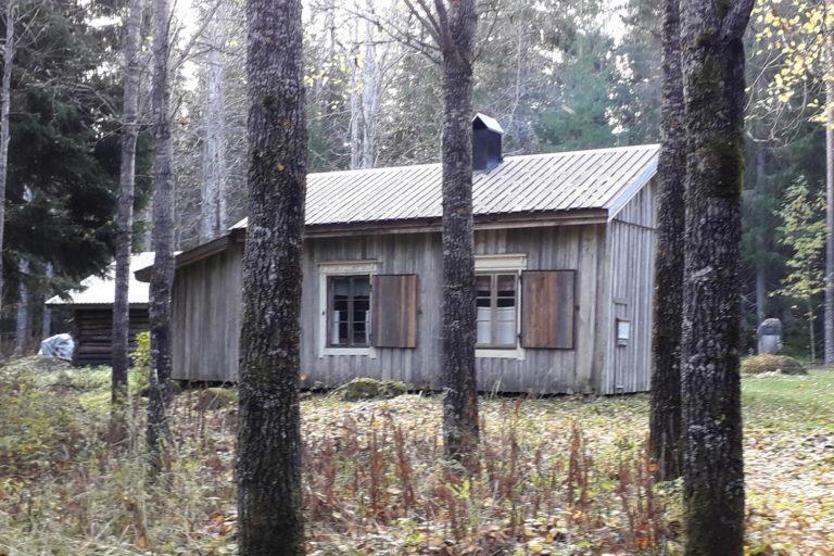 Harmaa puinen rakennus, ikkunaluukot on avattu. Etualalla puun runkoja.