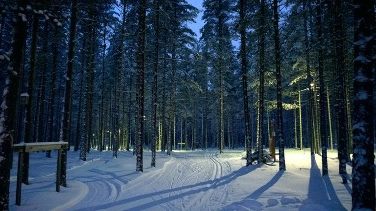 Pappilankankaalta lähtee lumisena talvena hiihtolatuja.