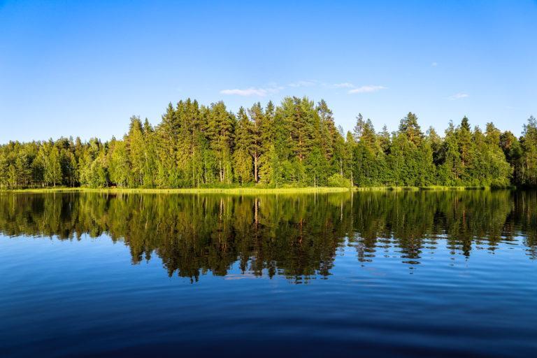 Kesäinen järvimaisema, etualalla vettä, vastarannalla puita ja sininen taivas.
