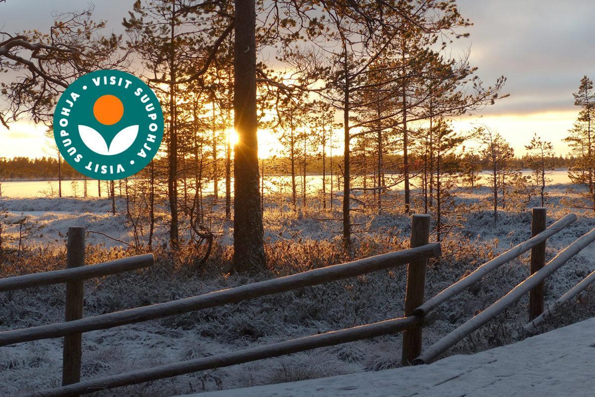 Auringonlasku talvella, etualalla seiväsaita jonka takana näkyy mäntyjä ja talvinen suomaisema.