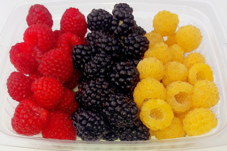 Muovirasiassa on eri värisiä marjoja, keltaista ja punasita vadelmaa sekä mustia karhunvarukoita.