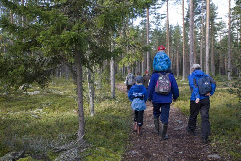 Ihmisryhmä kävelemässä metsäpolulla, pikkupoika istuu miehen harteilla.