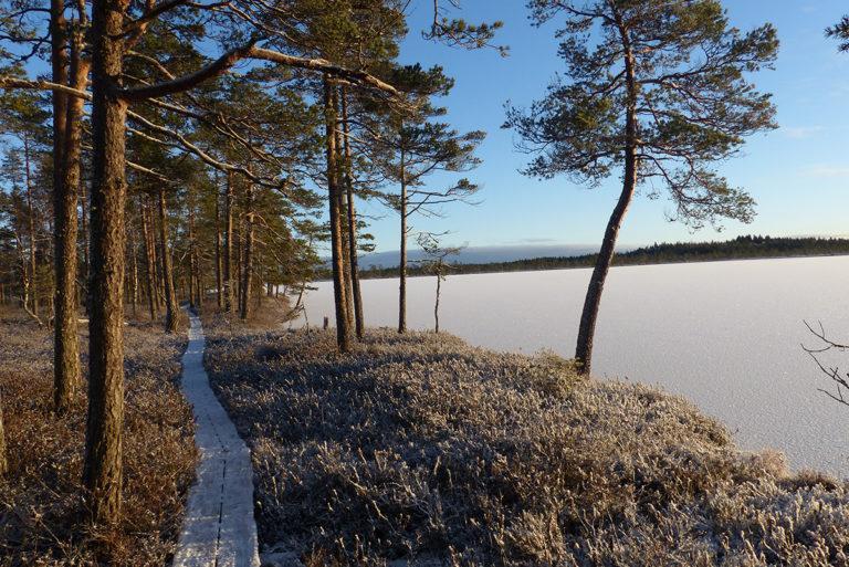 Talvinen kuva Kauhanevalta.